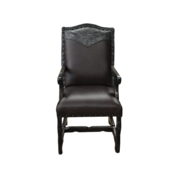 BISON-ARM-DINING-CHAIR